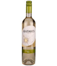 Chili Antares Sauvignon blanc